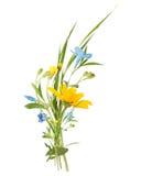 Ανθοδέσμη των άγριων λουλουδιών τομέων, χρώματα Πάσχας, που απομονώνονται στοκ φωτογραφίες με δικαίωμα ελεύθερης χρήσης