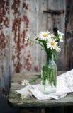 Ανθοδέσμη των άγριων camomile λουλουδιών Στοκ εικόνες με δικαίωμα ελεύθερης χρήσης