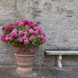Ανθοδέσμη των ζωηρόχρωμων λουλουδιών και ένας πάγκος σε έναν κήπο Ιταλία Στοκ φωτογραφία με δικαίωμα ελεύθερης χρήσης