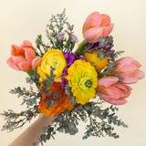 Ανθοδέσμη των ζωηρόχρωμων λουλουδιών στο χέρι Στοκ Εικόνες