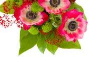 Ανθοδέσμη των κόκκινων λουλουδιών anemone Στοκ εικόνα με δικαίωμα ελεύθερης χρήσης