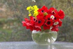 Ανθοδέσμη των κόκκινων anemones Στοκ φωτογραφίες με δικαίωμα ελεύθερης χρήσης