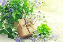 Ανθοδέσμη των μικρών λεπτών μπλε λουλουδιών Βερόνικα, κιβώτιο δώρων στοκ εικόνες
