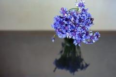Ανθοδέσμη των μπλε λουλουδιών τομέων Στοκ φωτογραφία με δικαίωμα ελεύθερης χρήσης