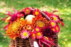 Ανθοδέσμη των λουλουδιών φθινοπώρου Στοκ εικόνα με δικαίωμα ελεύθερης χρήσης