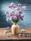 Ανθοδέσμη των λουλουδιών φρέσκων κρεμμυδιών κρεμμυδιών Στοκ Εικόνες