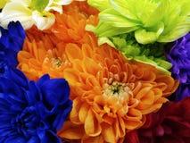 Ανθοδέσμη των λουλουδιών χρυσάνθεμο, μαργαρίτα πολύχρωμα φωτεινά λουλούδια ανασκόπηση που χρωματίζεται Για το σχέδιο Στοκ Εικόνα