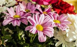 Ανθοδέσμη των λουλουδιών Στοκ Φωτογραφία