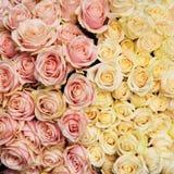 Ανθοδέσμη των φρέσκων, εκλεκτής ποιότητας τριαντάφυλλων Στοκ φωτογραφία με δικαίωμα ελεύθερης χρήσης