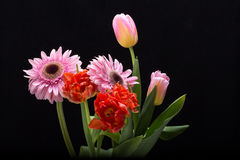 Ανθοδέσμη των φρέσκων τουλιπών άνοιξη και των λουλουδιών gerbera Στοκ φωτογραφία με δικαίωμα ελεύθερης χρήσης