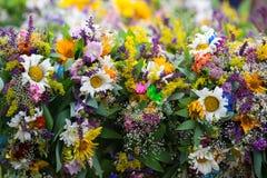 Ανθοδέσμη των wildflowers Στοκ φωτογραφία με δικαίωμα ελεύθερης χρήσης