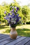 Ανθοδέσμη chamomile στο βάζο έξω, όμορφη ηλιόλουστη ημέρα του καλοκαιριού Υπόβαθρο κήπων στοκ εικόνες