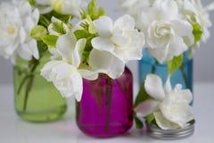 Ανθοδέσμη Gardenias Στοκ φωτογραφία με δικαίωμα ελεύθερης χρήσης