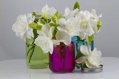 Ανθοδέσμη Gardenias Στοκ Φωτογραφίες