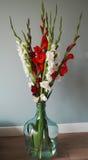 Ανθοδέσμη Gladiolus στοκ εικόνες