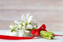 Ανθοδέσμη Snowdrops με την κόκκινη κορδέλλα για ένα ρομαντικό παρόν στοκ εικόνα