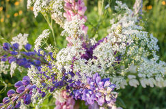 Ανθοδέσμη Wildflowers Στοκ εικόνα με δικαίωμα ελεύθερης χρήσης