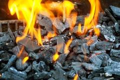 Ανθρακόπλινθοι ξυλάνθρακα που βάζουν φωτιά επάνω για τη σχάρα Στοκ Εικόνα