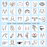 Ανθρώπινα εικονίδια ανατομίας πόνου σώματος Στοκ φωτογραφίες με δικαίωμα ελεύθερης χρήσης