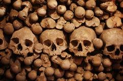 Ανθρώπινα κρανία Στοκ εικόνα με δικαίωμα ελεύθερης χρήσης