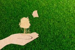 Ανθρώπινα χέρια έννοιας οικολογίας που κρατούν το μεγάλες ποδήλατο και την πεταλούδα δέντρων εγκαταστάσεων Στοκ Εικόνες