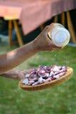 Ανθρώπινα χέρια που προετοιμάζουν το πιάτο του της Γαλικίας μαγειρευμένου ύφος χταποδιού gallega pulpo Λα Στοκ φωτογραφίες με δικαίωμα ελεύθερης χρήσης