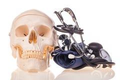 Ανθρώπινα scull και στηθοσκόπιο Στοκ φωτογραφία με δικαίωμα ελεύθερης χρήσης
