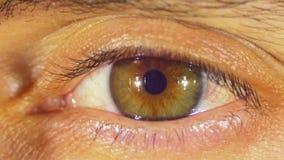 Ανθρώπινες αναλαμπές ματιών φιλμ μικρού μήκους