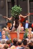 ανθρώπινη βλάστηση φυτών Στοκ φωτογραφία με δικαίωμα ελεύθερης χρήσης