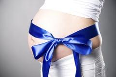 Ανθρώπινη εγκυμοσύνη Στοκ Φωτογραφία