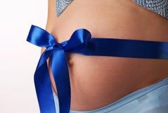 Ανθρώπινη εγκυμοσύνη Στοκ εικόνα με δικαίωμα ελεύθερης χρήσης
