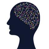 Ανθρώπινη επικεφαλής σκιαγραφία με τη σύνθετη δομή εγκεφάλου Στοκ εικόνες με δικαίωμα ελεύθερης χρήσης
