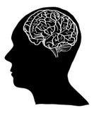 Ανθρώπινη διανυσματική περίληψη εγκεφάλου που σκιαγραφείται επάνω Στοκ Φωτογραφίες