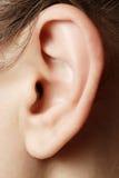 Ανθρώπινη κινηματογράφηση σε πρώτο πλάνο αυτιών στοκ φωτογραφίες με δικαίωμα ελεύθερης χρήσης