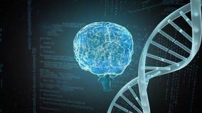 Ανθρώπινη κωδικοποίηση εγκεφάλου και κωδικοποίηση DNA ελεύθερη απεικόνιση δικαιώματος