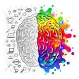 Ανθρώπινη λογική έννοιας εγκεφάλου και δημιουργικό διάνυσμα ελεύθερη απεικόνιση δικαιώματος