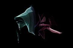 Ανθρώπινη μετακίνηση στο φως λουρίδων των οδηγήσεων Στοκ φωτογραφίες με δικαίωμα ελεύθερης χρήσης