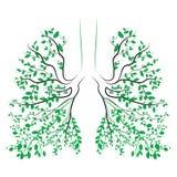 ανθρώπινοι πνεύμονες Αναπνευστικό σύστημα υγιείς πνεύμονες Φως υπό μορφή δέντρου Τέχνη γραμμών Σχεδιασμός με το χέρι Ιατρική Στοκ Εικόνες