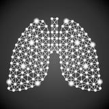 Ανθρώπινοι πνεύμονες που απομονώνονται σε ένα μαύρο υπόβαθρο επίσης corel σύρετε το διάνυσμα απεικόνισης Στοκ φωτογραφία με δικαίωμα ελεύθερης χρήσης