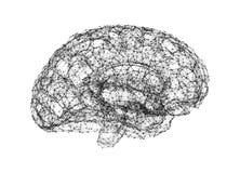 Ανθρώπινος εγκέφαλος στο άσπρο υπόβαθρο υπό μορφή τεχνητού διανυσματική απεικόνιση