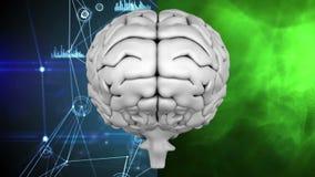 Ανθρώπινος εγκέφαλος στο κλίμα που διαιρείται σε δύο απεικόνιση αποθεμάτων