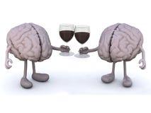 Ανθρώπινος εγκέφαλος δύο με το ποτήρι του κόκκινου κρασιού Στοκ Εικόνα