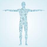 ανθρώπινος Μόριο δομών του ατόμου Ιατρική, επιστήμη και τεχνολογία Επιστημονικό διάνυσμα για το σχέδιό σας Στοκ Εικόνα