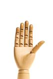 ανθρώπινος ξύλινος χεριών Στοκ Φωτογραφίες