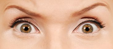 ανθρώπινος τρελλός ματιών στοκ φωτογραφία με δικαίωμα ελεύθερης χρήσης