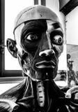 Ανθρώπινο ανατομικό πρότυπο, κεφάλι ανδρείκελων ανατομίας, γραπτό πορτρέτο τεράτων στοκ εικόνες