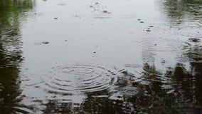 Ανθρώπινο διαγώνιο νερό λιμνών απόθεμα βίντεο