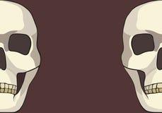 Ανθρώπινο κρανίο ή απαίσια απεικόνιση θανάτων θεριστών επικεφαλής Στοκ Εικόνα