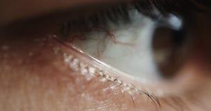 Ανθρώπινο μάτι με τα τολμηρά κόκκινα κρασιά απόθεμα βίντεο