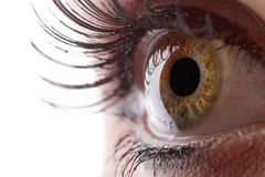 Ανθρώπινο μάτι Στοκ εικόνα με δικαίωμα ελεύθερης χρήσης